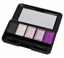 Christian Dior Palette Fards Apaupieres 5-Colors